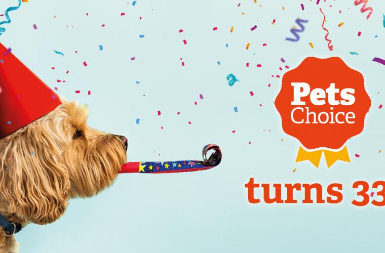 pets choice birthday